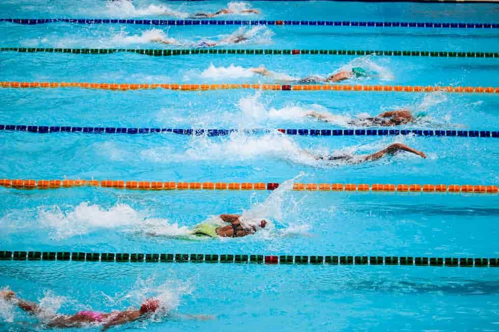 ставки на плаванье